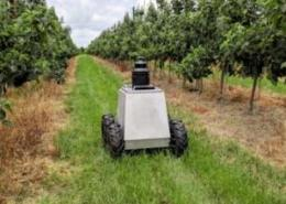 Cambridge Consultants introduces AI-powered robot for agritech