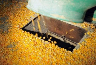 Cargill to build new feed mill in Vietnam