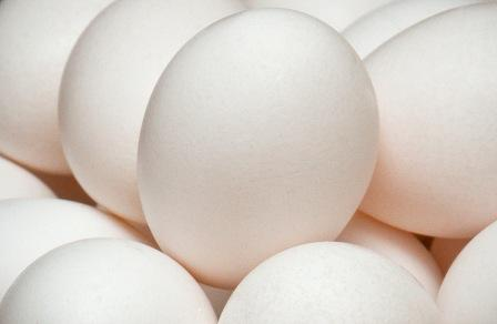 New Australian Egg Corporation Limited (AECL) research suggests that egg production has the lowest carbon footprint of all the main protein foods