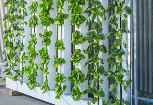 vertical farm 916337 640